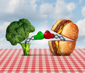 Diet battle and food fight nutrition concept as a fresh healthy broccoli fighting an unhealthy cheese burger with boxing gloves punching each other.
